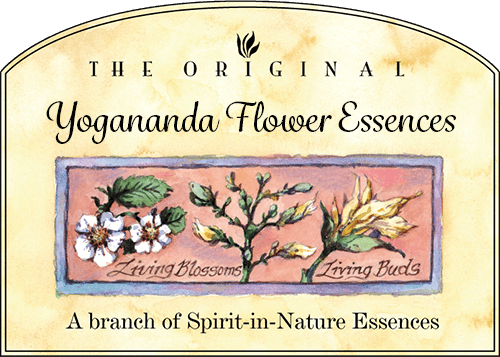 Yogananda Flower Essences
