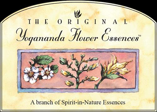 Yogananda Flower Essences